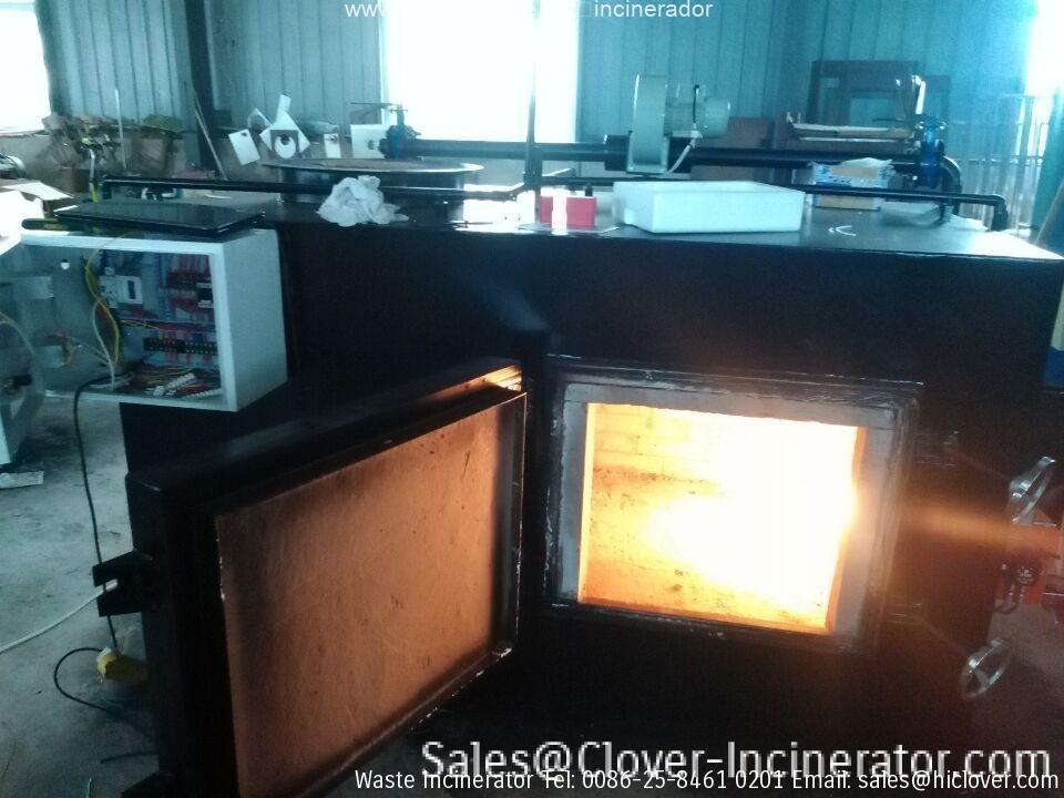 incinerator china