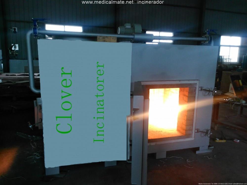 laboratory incinerator