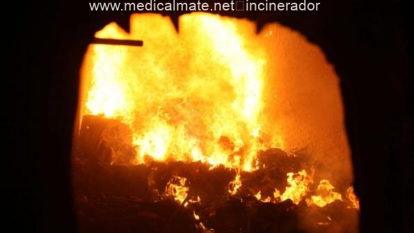 animal waste incinerator