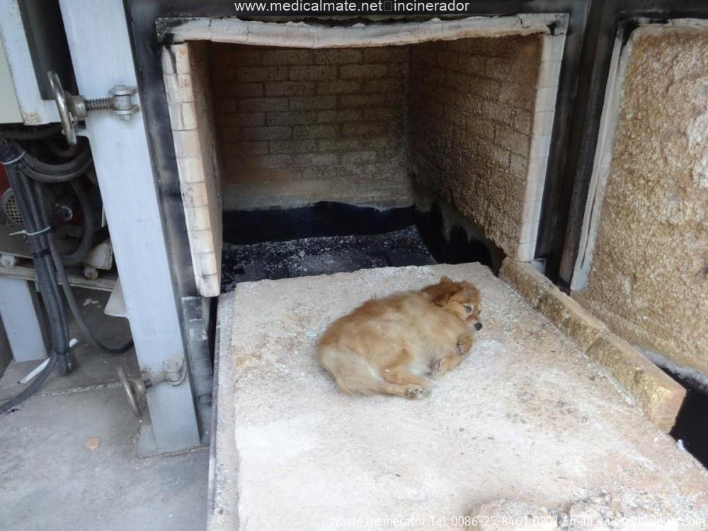 pet cremation equipment